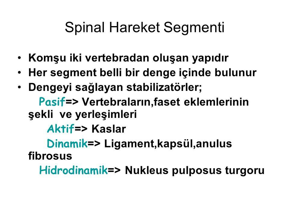 Spinal Hareket Segmenti Komşu iki vertebradan oluşan yapıdır Her segment belli bir denge içinde bulunur Dengeyi sağlayan stabilizatörler; Pasif => Ver