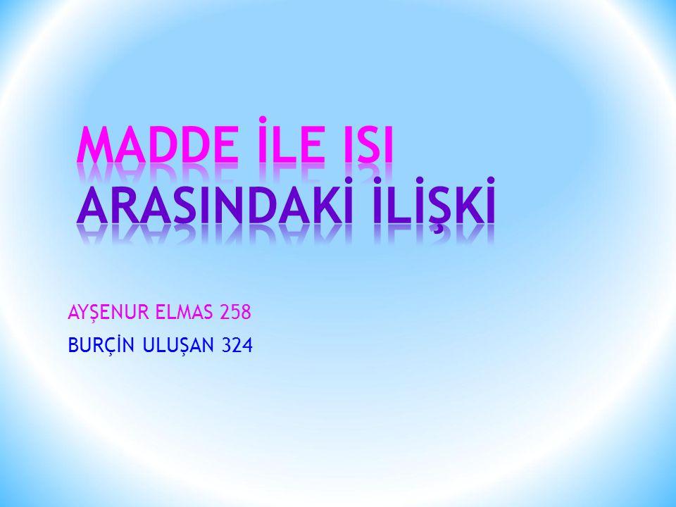 AYŞENUR ELMAS 258 BURÇİN ULUŞAN 324
