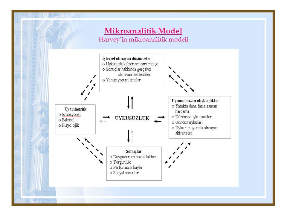 Mikroanalitik Model Harvey'in mikroanalitik modeli