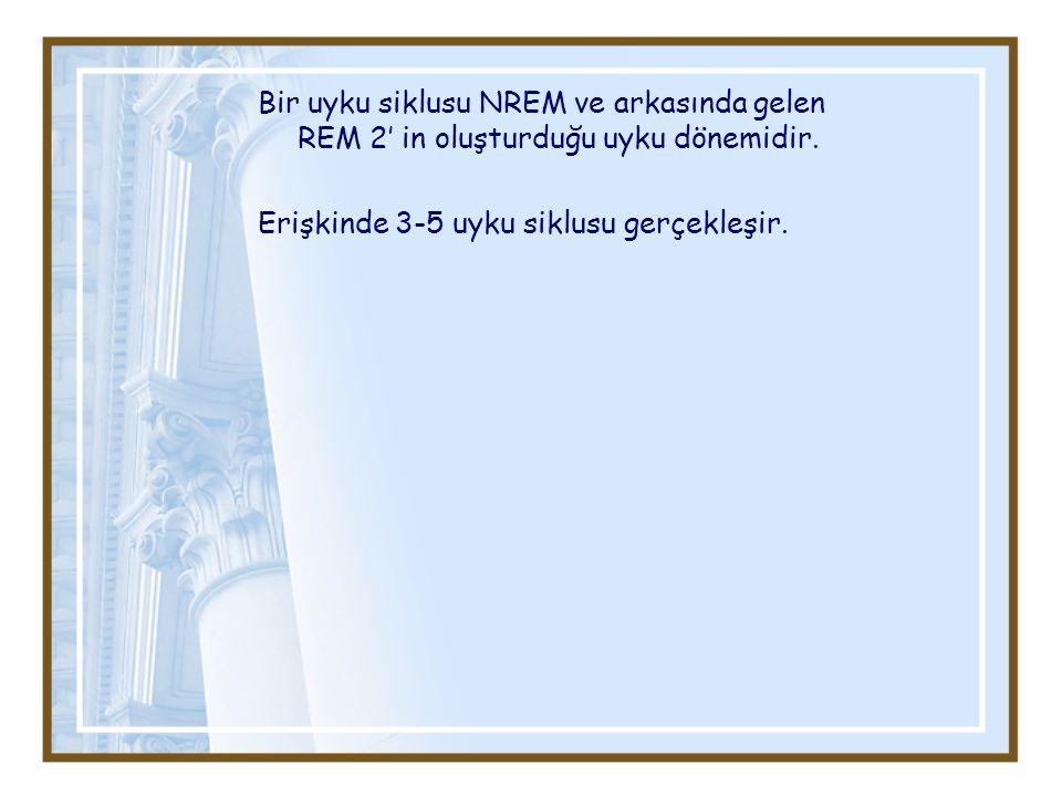 Bir uyku siklusu NREM ve arkasında gelen REM 2' in oluşturduğu uyku dönemidir.