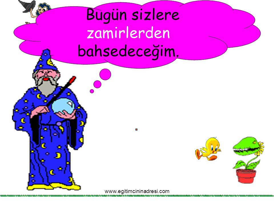 İsim olmadığı halde, ismin yerini tutan kelimelere zamir denir. www.egitimcininadresi.com