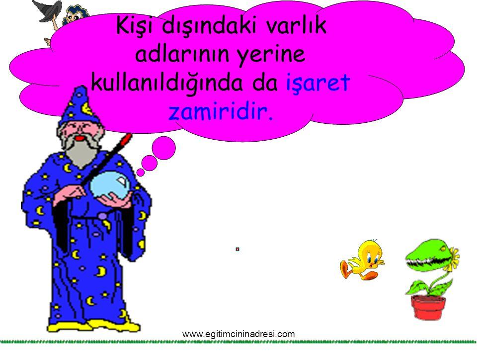 Kişi dışındaki varlık adlarının yerine kullanıldığında da işaret zamiridir. www.egitimcininadresi.com
