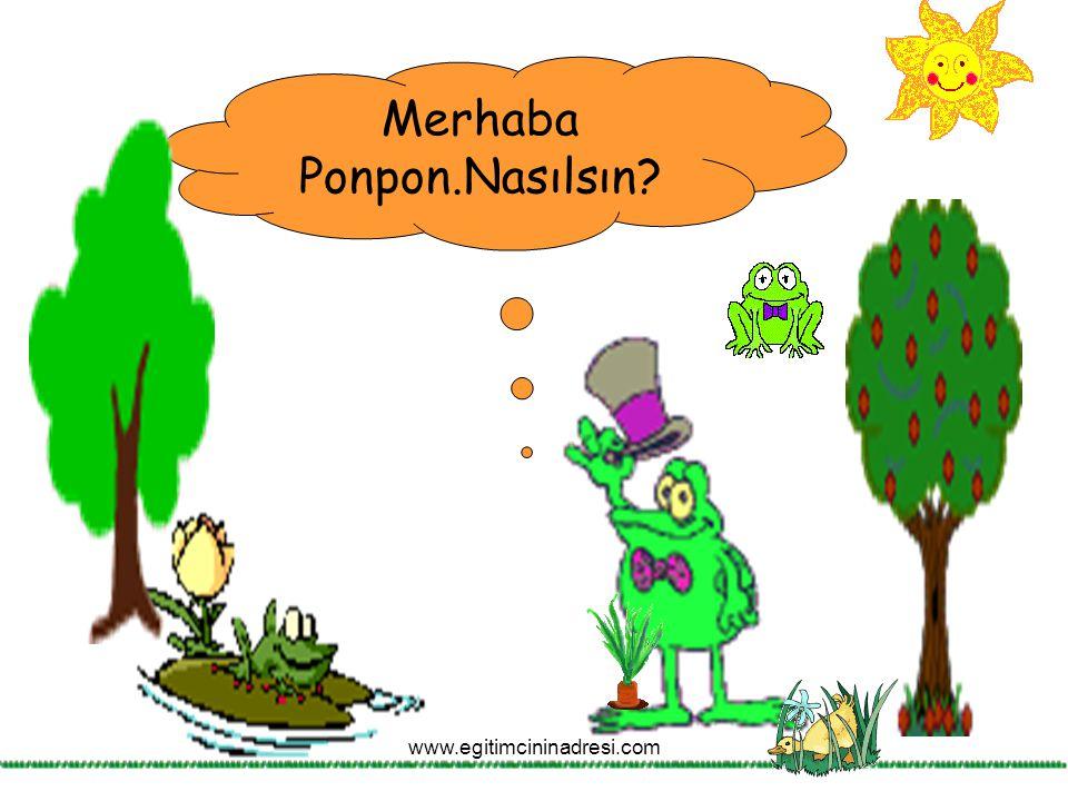 Merhaba Ponpon.Nasılsın? www.egitimcininadresi.com