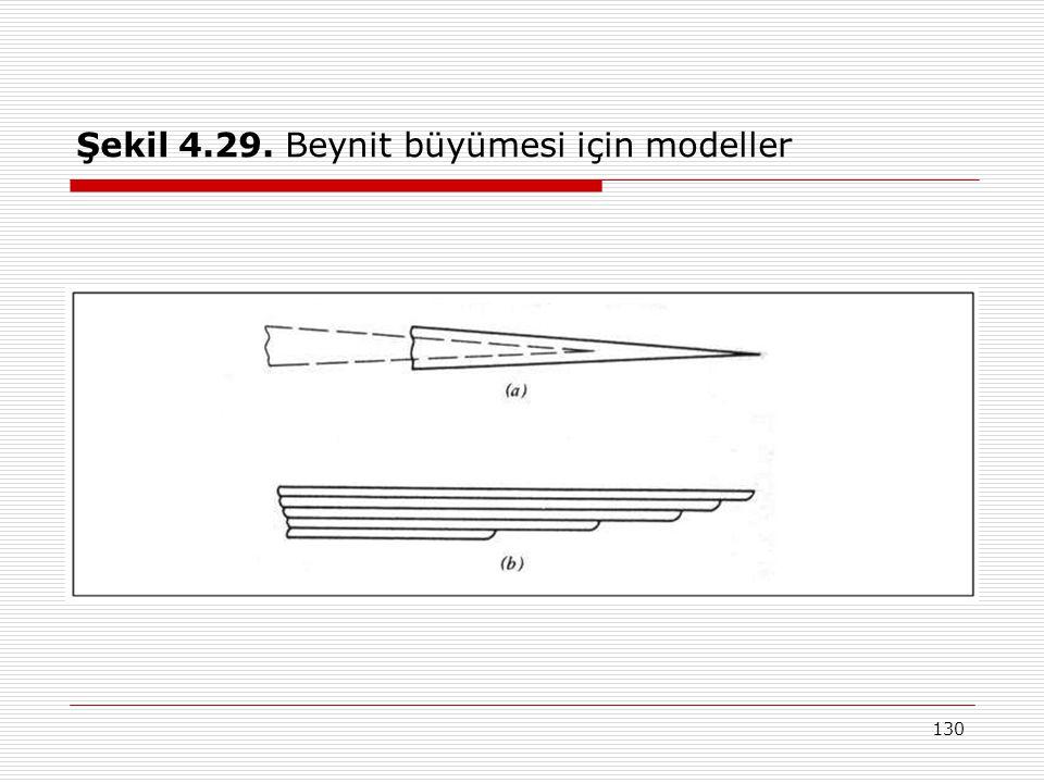 130 Şekil 4.29. Beynit büyümesi için modeller