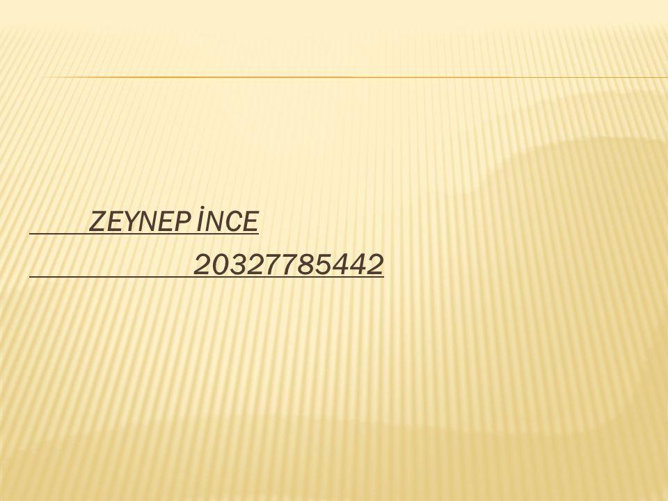 ZEYNEP İNCE 20327785442