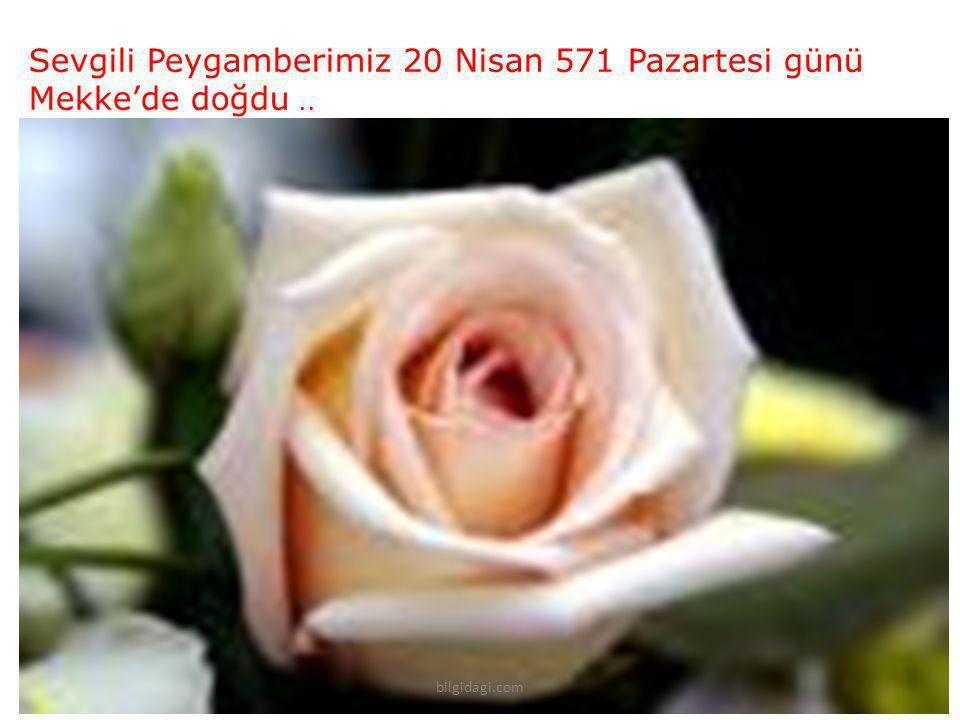 Sevgili Peygamberimiz 20 Nisan 571 Pazartesi günü Mekke'de doğdu.. bilgidagi.com