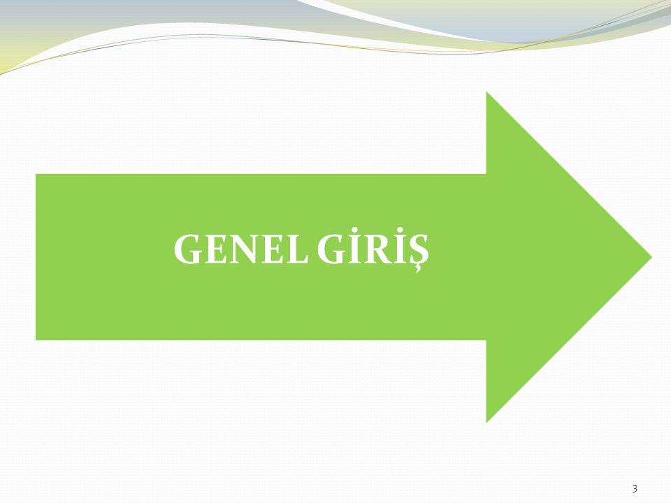 3 GENEL GİRİŞ