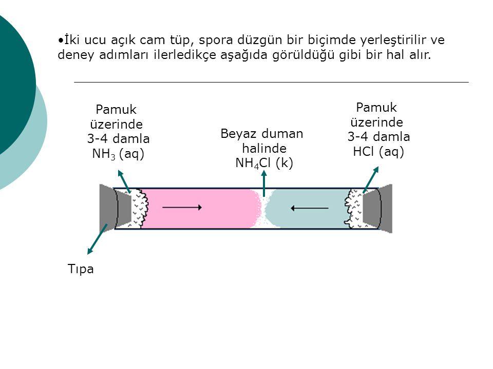 Pamuk üzerinde 3-4 damla NH 3 (aq) Pamuk üzerinde 3-4 damla HCl (aq) Beyaz duman halinde NH 4 Cl (k) Tıpa İki ucu açık cam tüp, spora düzgün bir biçimde yerleştirilir ve deney adımları ilerledikçe aşağıda görüldüğü gibi bir hal alır.