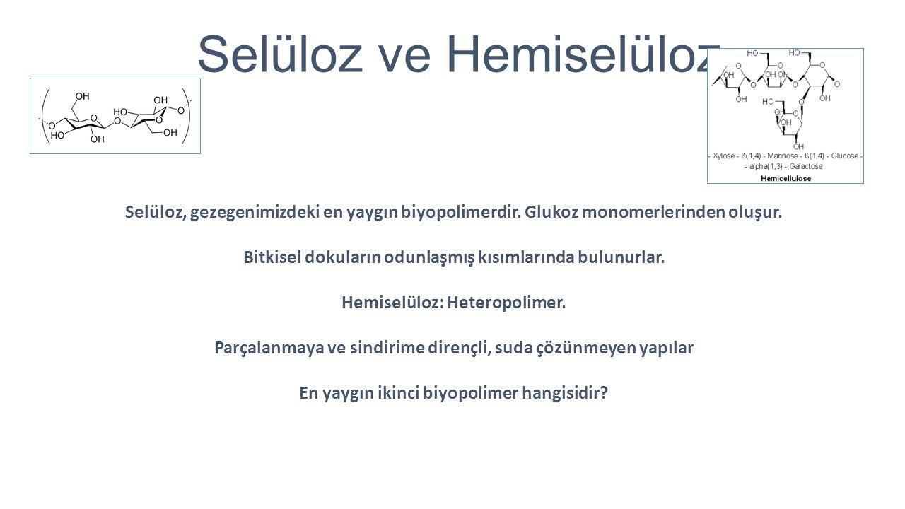 Selüloz ve Hemiselüloz Selüloz, gezegenimizdeki en yaygın biyopolimerdir. Glukoz monomerlerinden oluşur. Bitkisel dokuların odunlaşmış kısımlarında bu