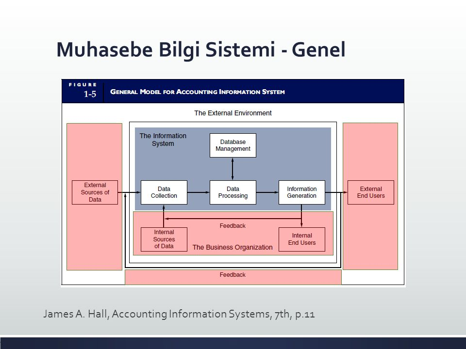 Muhasebe Bilgi Sistemi - Genel James A. Hall, Accounting Information Systems, 7th, p.11