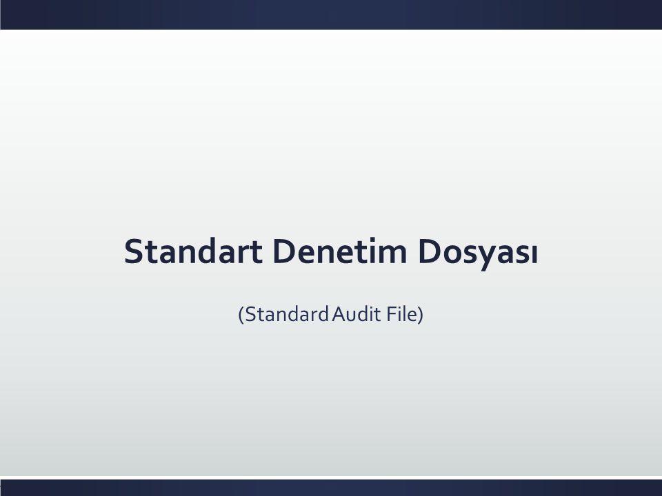 Standart Denetim Dosyası (Standard Audit File)