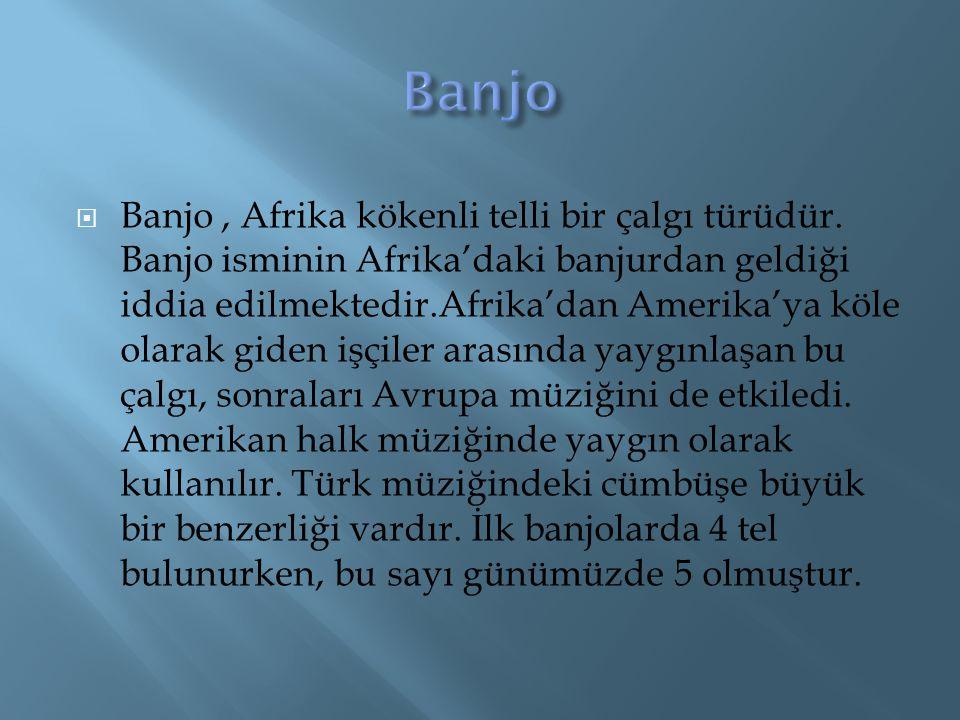 BBanjo, Afrika kökenli telli bir çalgı türüdür. Banjo isminin Afrika'daki banjurdan geldiği iddia edilmektedir.Afrika'dan Amerika'ya köle olarak gid