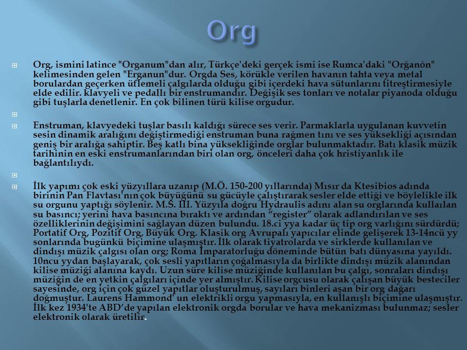  Org, ismini latince