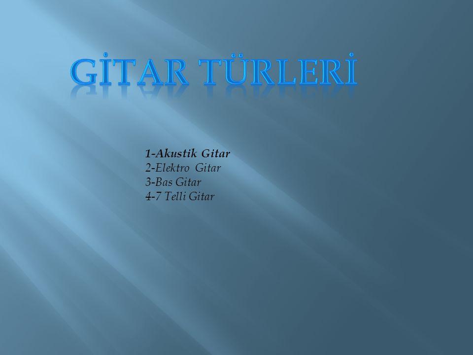 1-Akustik Gitar 2-Elektro Gitar 3-Bas Gitar 4-7 Telli Gitar