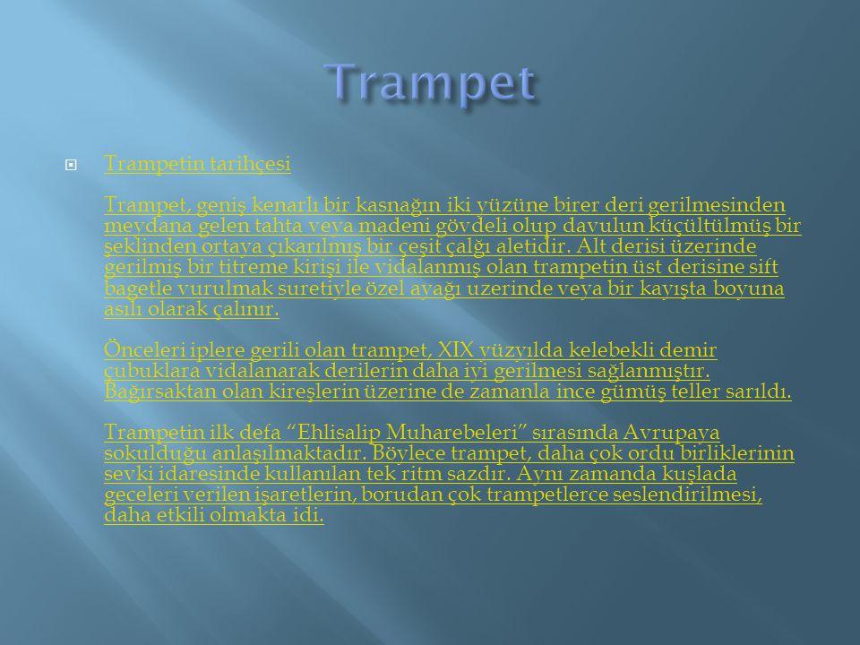  Trampetin tarihçesi Trampet, geniş kenarlı bir kasnağın iki yüzüne birer deri gerilmesinden meydana gelen tahta veya madeni gövdeli olup davulun küç