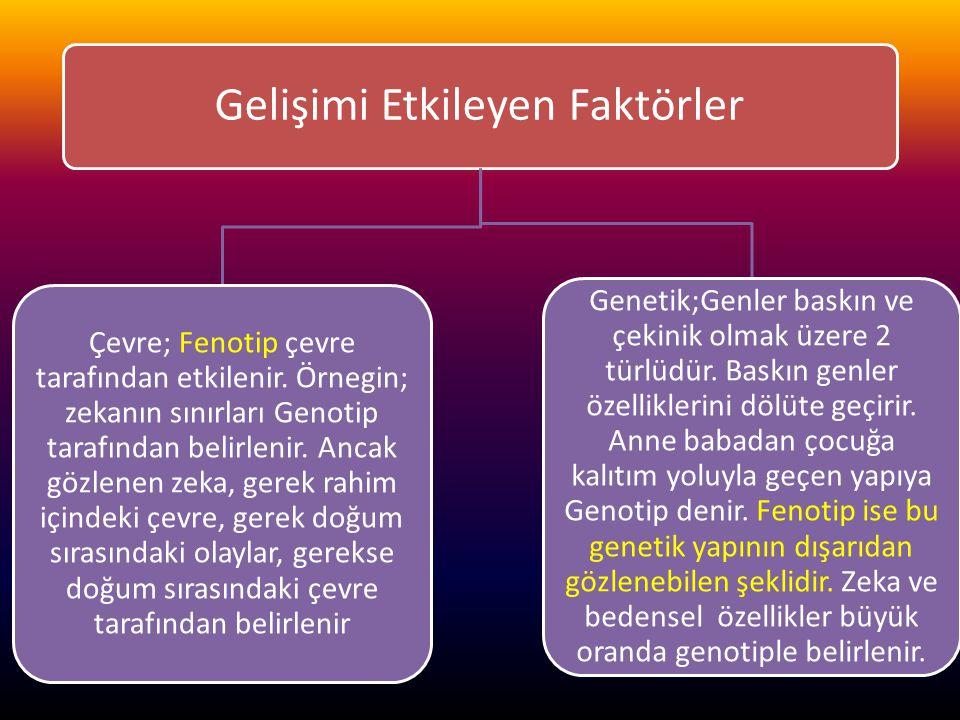 www.cemalsahin.comwww.cemalsahin.co m 44 Gelişimi Etkileyen Faktörler Çevre; Fenotip çevre tarafından etkilenir. Örnegin; zekanın sınırları Genotip ta