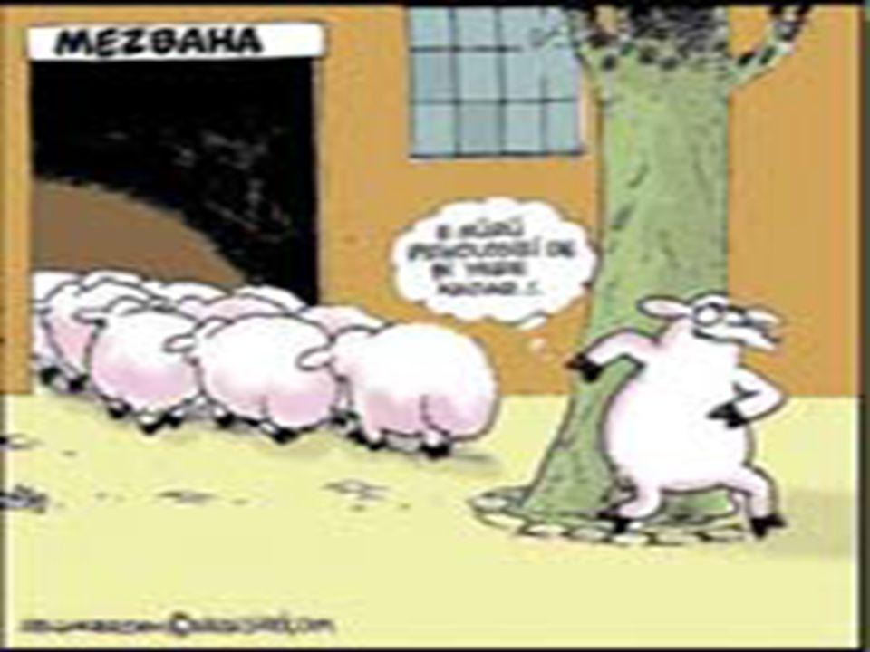 5 PSİKOLOJİ