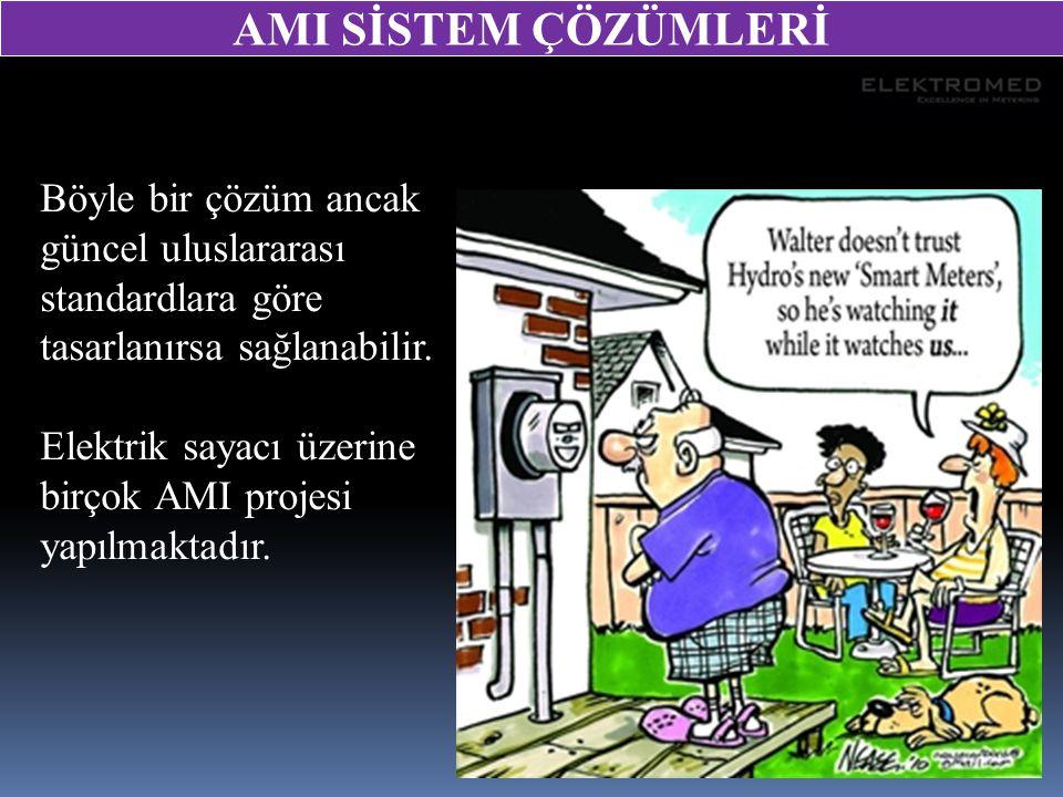 Böyle bir çözüm ancak güncel uluslararası standardlara göre tasarlanırsa sağlanabilir. Elektrik sayacı üzerine birçok AMI projesi yapılmaktadır. AMI S
