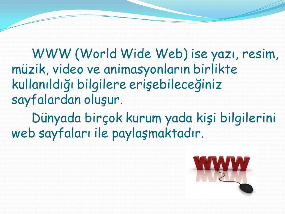 WWW (World Wide Web) ise yazı, resim, müzik, video ve animasyonların birlikte kullanıldığı bilgilere erişebileceğiniz sayfalardan oluşur. Dünyada birç