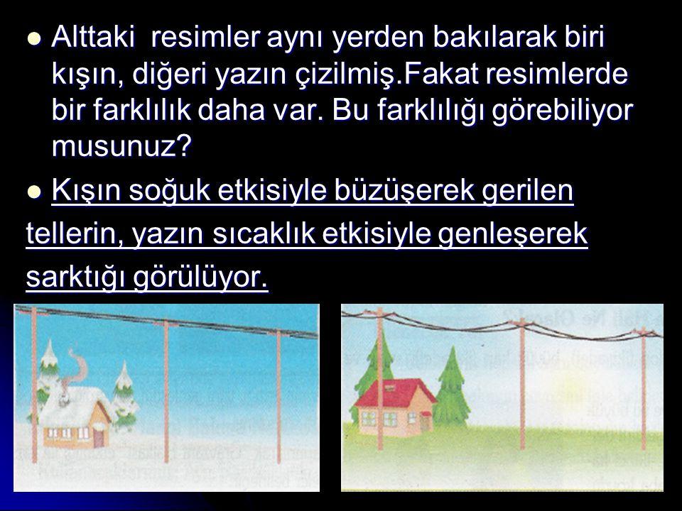 Alttaki resimler aynı yerden bakılarak biri kışın, diğeri yazın çizilmiş.Fakat resimlerde bir farklılık daha var.