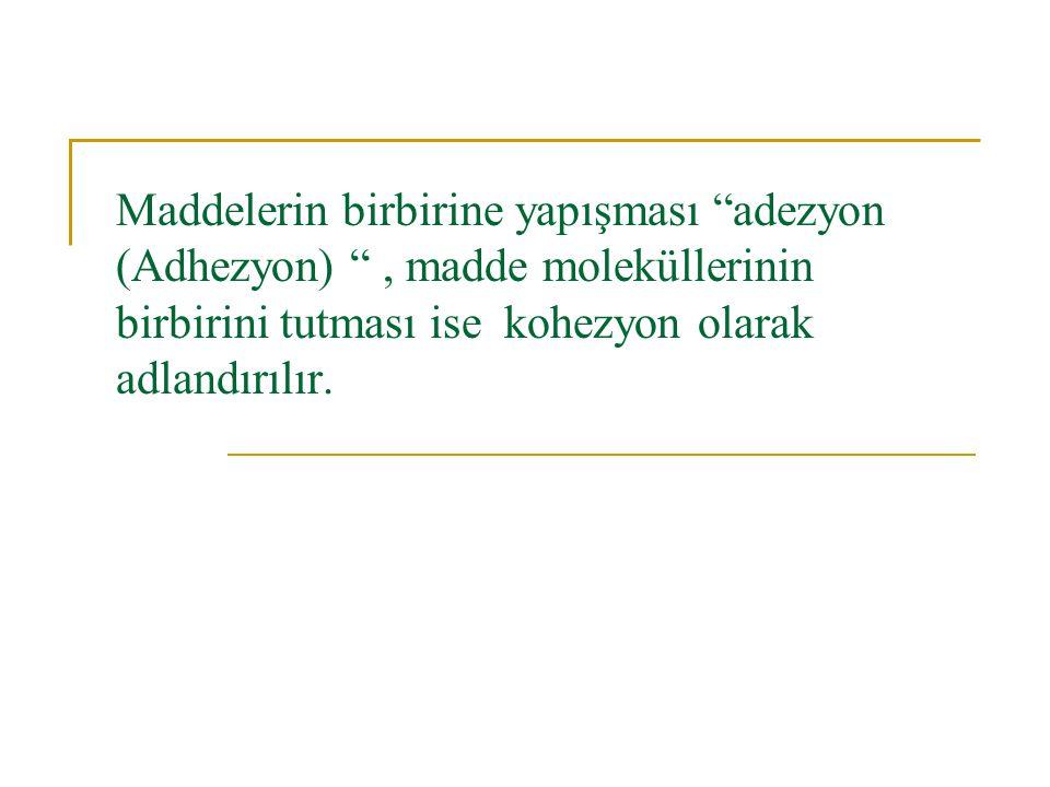 """Maddelerin birbirine yapışması """"adezyon (Adhezyon) """", madde moleküllerinin birbirini tutması ise kohezyon olarak adlandırılır."""