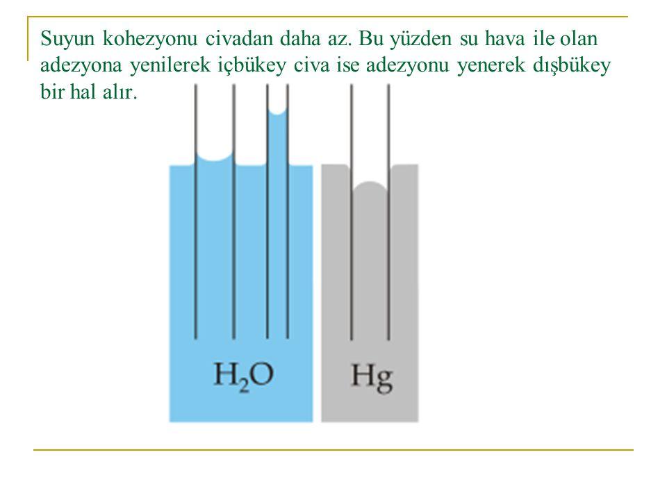 Suyun kohezyonu civadan daha az. Bu yüzden su hava ile olan adezyona yenilerek içbükey civa ise adezyonu yenerek dışbükey bir hal alır.