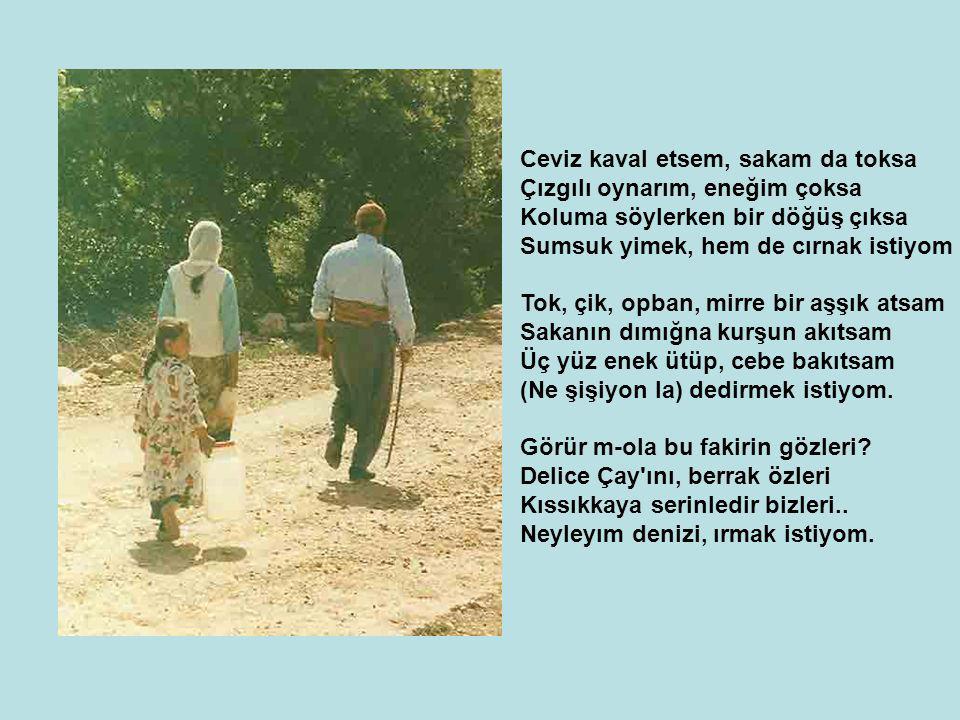 Kim sorarsa yazdın bunları niye Gelecek nesile kalsın hediye Kırşehir de doğdum, Türkmen im diye Her yerde göğsümü germek istiyom.