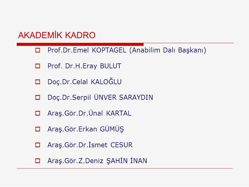 AKADEMİK KADRO  Prof.Dr.Emel KOPTAGEL (Anabilim Dalı Başkanı)  Prof.