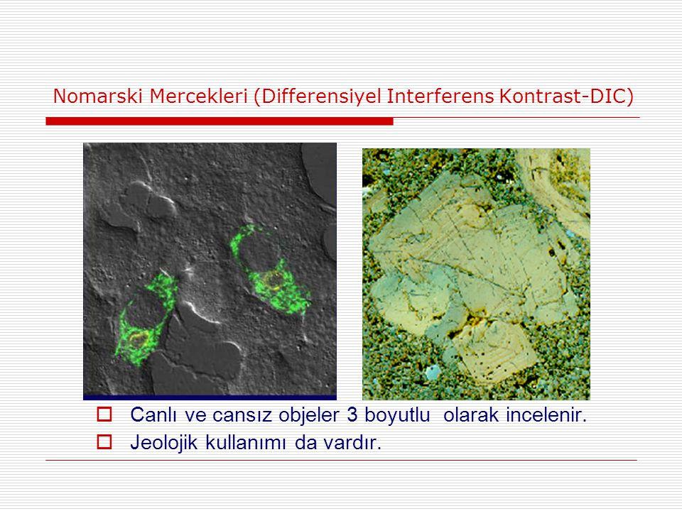 Nomarski Mercekleri (Differensiyel Interferens Kontrast-DIC)  Canlı ve cansız objeler 3 boyutlu olarak incelenir.