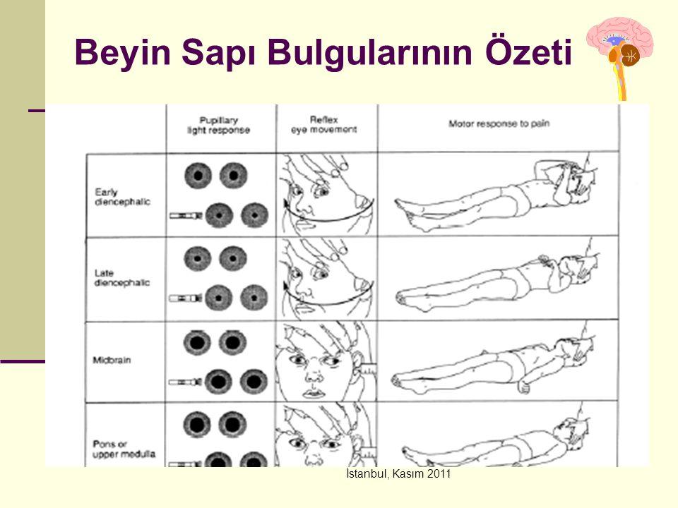 İstanbul, Kasım 2011 Beyin Sapı Bulgularının Özeti