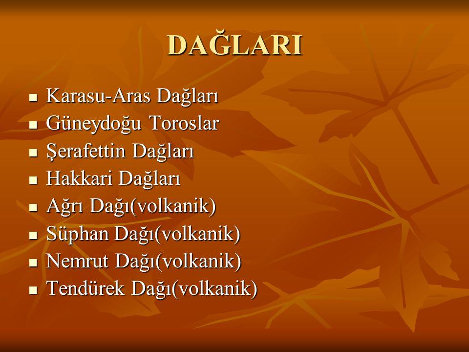 OVALARI Kuzeyde Güneyde Erzincan Elbistan Tercan Malatya Erzurum Elazığ Iğdır Bingöl Muş Muş