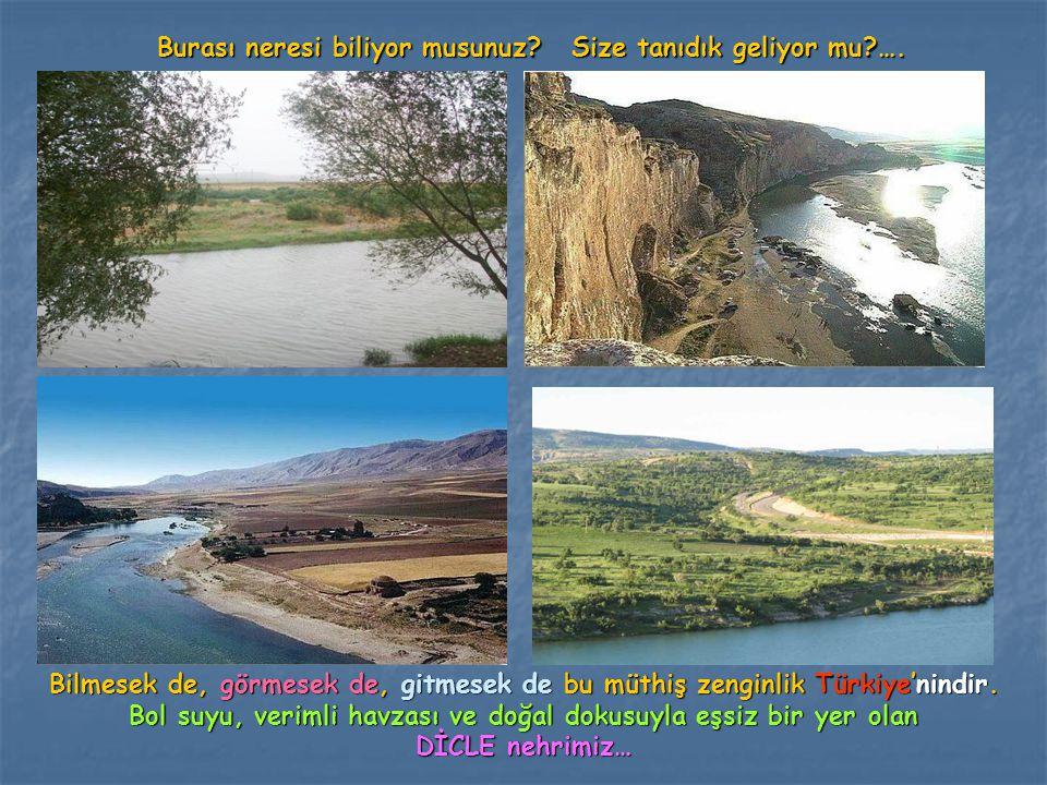 Burası neresi biliyor musunuz? Size tanıdık geliyor mu?…. Bilmesek de, görmesek de, gitmesek de bu müthiş zenginlik Türkiye'nindir. Bol suyu, verimli