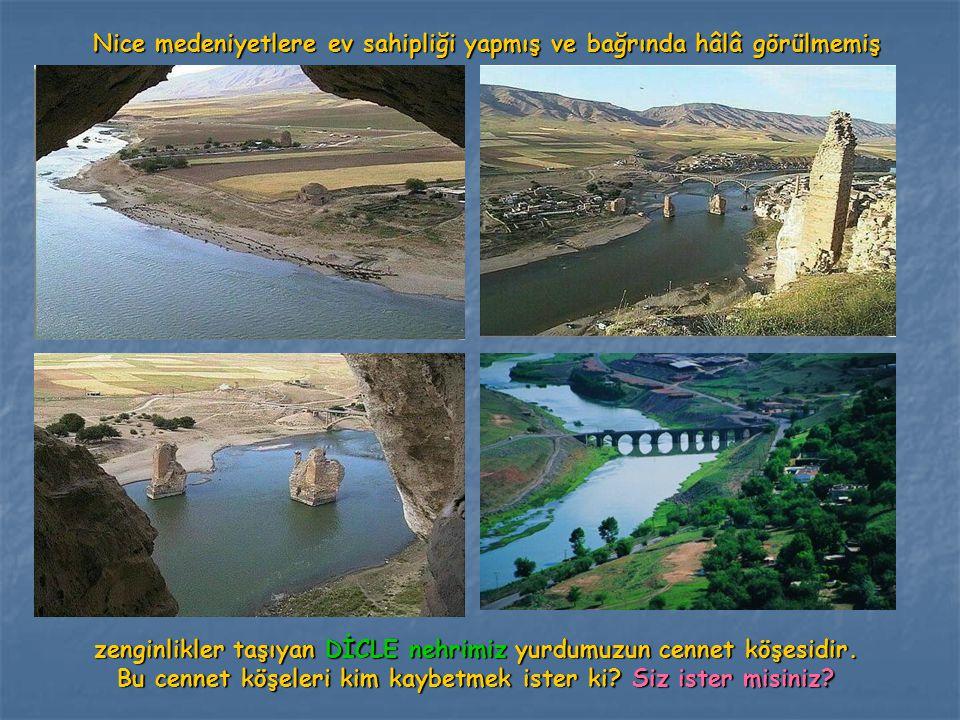 Nice medeniyetlere ev sahipliği yapmış ve bağrında hâlâ görülmemiş zenginlikler taşıyan DİCLE nehrimiz yurdumuzun cennet köşesidir. Bu cennet köşeleri