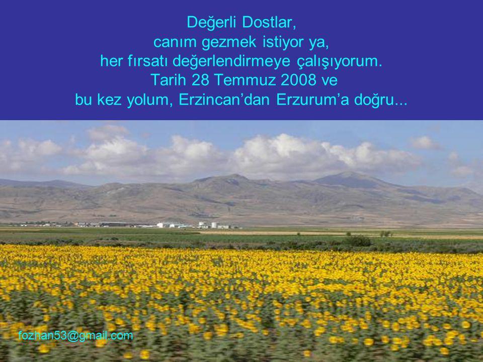 Değerli Dostlar, canım gezmek istiyor ya, her fırsatı değerlendirmeye çalışıyorum. Tarih 28 Temmuz 2008 ve bu kez yolum, Erzincan'dan Erzurum'a doğru.