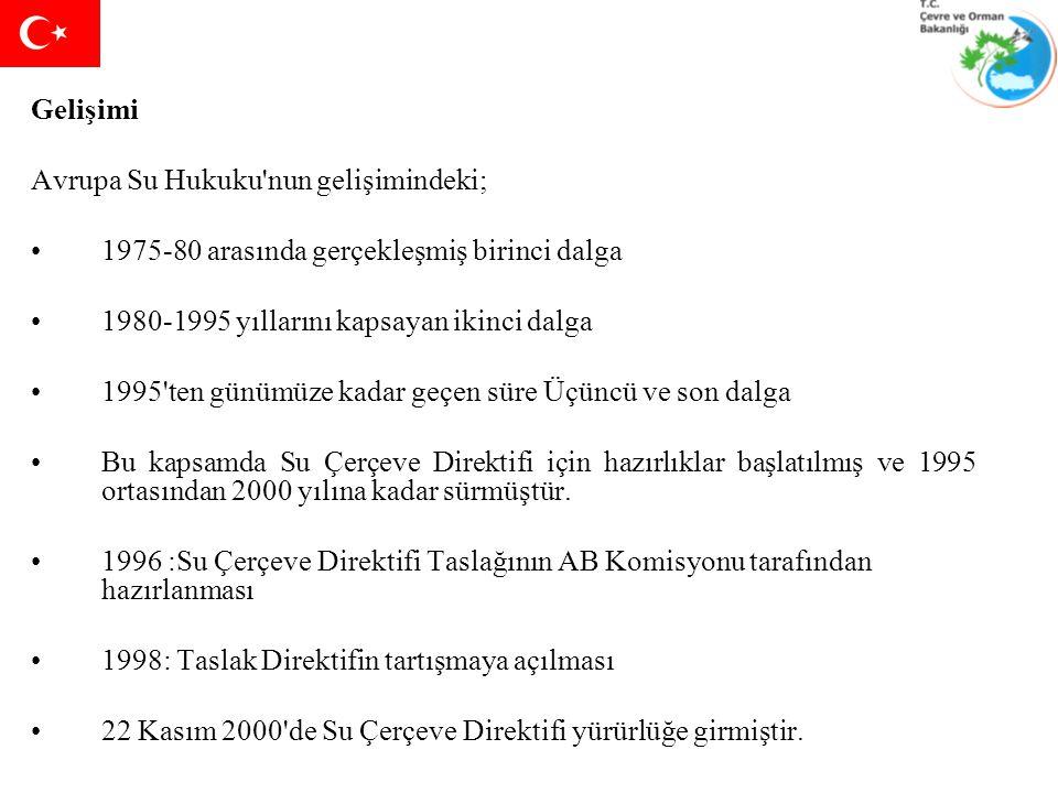 TÜRKİYE'DE AB'YE UYUMLU SU HAVZASI YÖNETİM STRATEJİSİ