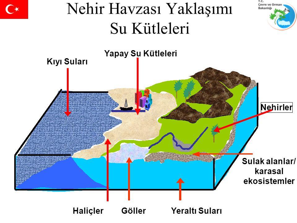 Nehir Havzası Yaklaşımı Su Kütleleri Yapay Su Kütleleri Sulak alanlar/ karasal ekosistemler Nehirler Haliçler Kıyı Suları Yeraltı SularıGöller