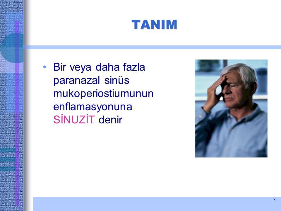 3 TANIM Bir veya daha fazla paranazal sinüs mukoperiostiumunun enflamasyonuna SİNUZİT denir