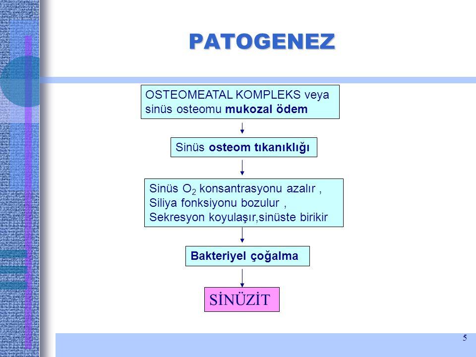 5 PATOGENEZ OSTEOMEATAL KOMPLEKS veya sinüs osteomu mukozal ödem Sinüs osteom tıkanıklığı Sinüs O 2 konsantrasyonu azalır, Siliya fonksiyonu bozulur,