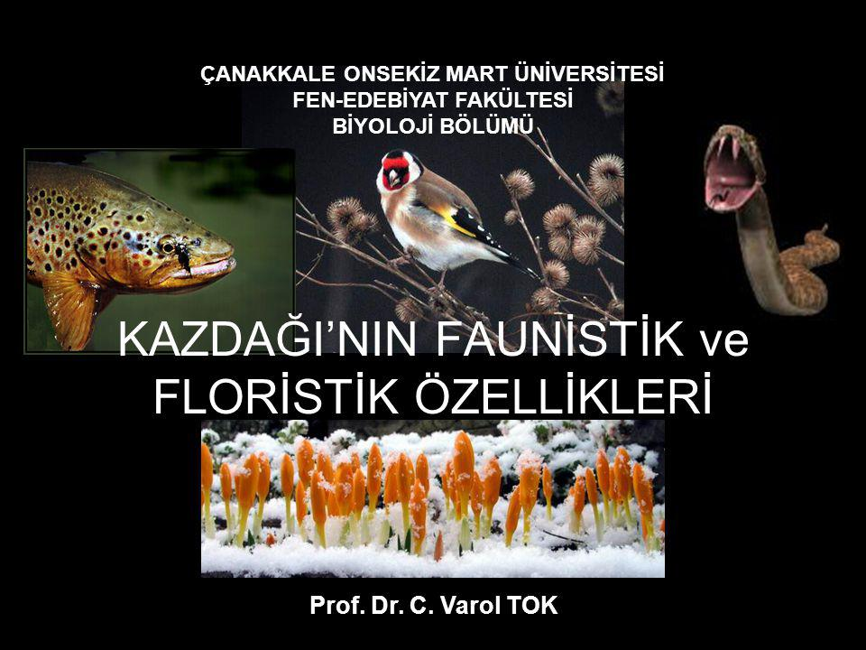 Kazdağı'nda endemik olan bu 82 türden 37 tanesi dünyada ve Türkiye'de sadece Kazdağı'nda bulunmaktadır.