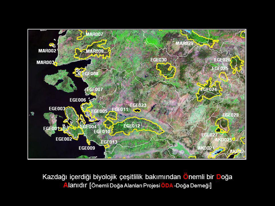 Ayrıca Kazdağı içerdiği Türkiye'ye hatta sadece kendine özgü bitki türleri nedeniyle Önemli bir Bitki Alanı olarak da kabul edilmektedir.