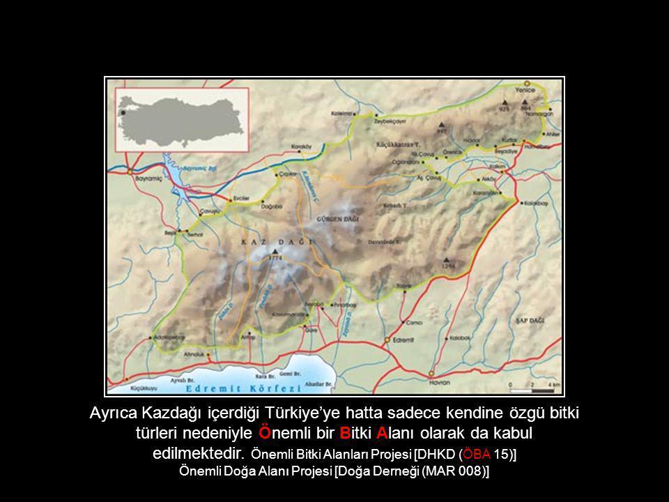 Ayrıca Kazdağı içerdiği Türkiye'ye hatta sadece kendine özgü bitki türleri nedeniyle Önemli bir Bitki Alanı olarak da kabul edilmektedir. Önemli Bitki