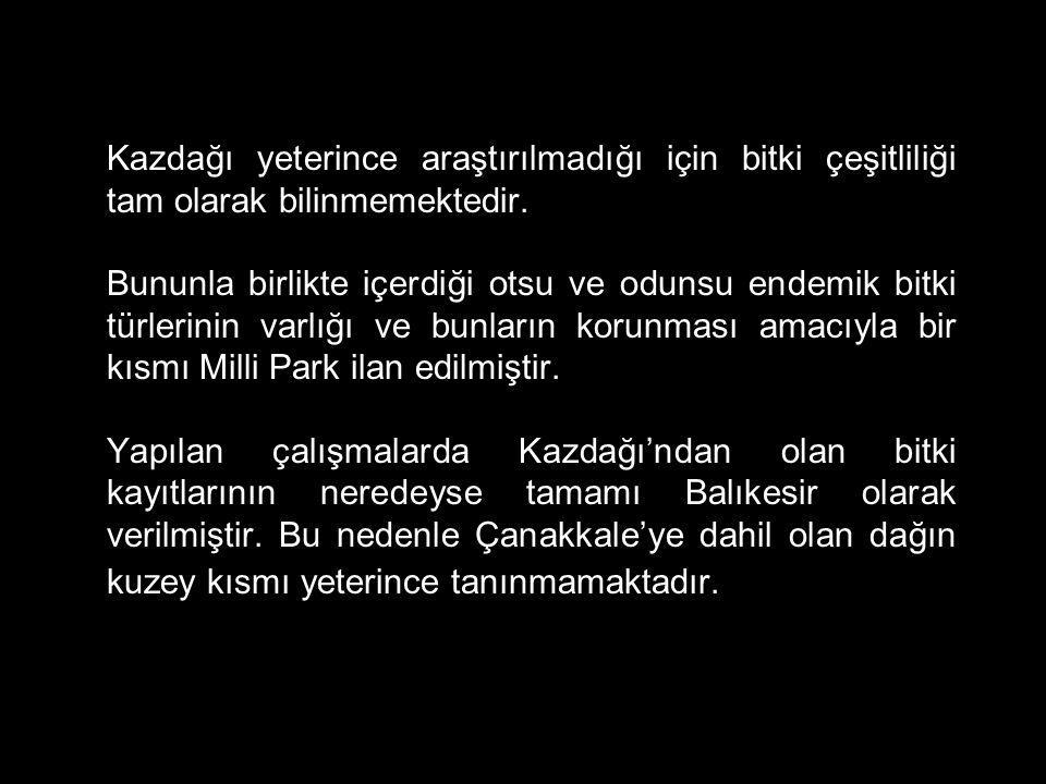 Koruma statüsü: Veri yetersiz (DD) YABANİ GÜL (Rosa sicula Tratt.) Dünya üzerinde farklı bölgelerde yayılış gösteren ancak Türkiye'de sadece Kazdağı'nda bulunan dekoratif görünümlü yabani bir gül.