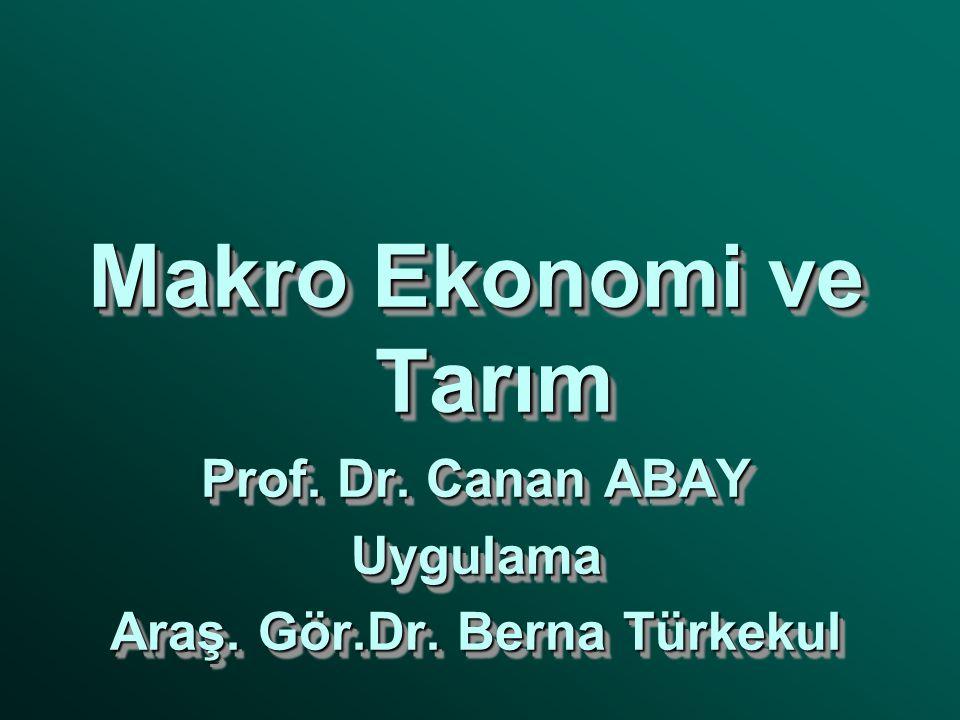 Makro Ekonomi ve Tarım Prof. Dr. Canan ABAY Uygulama Araş.