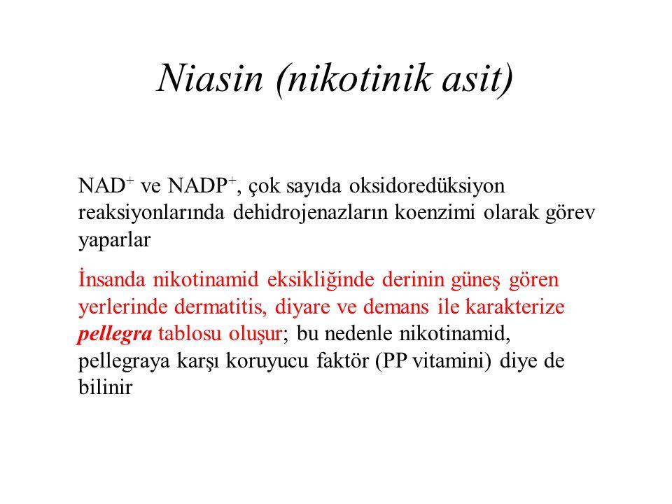Niasin (nikotinik asit) NAD + ve NADP +, çok sayıda oksidoredüksiyon reaksiyonlarında dehidrojenazların koenzimi olarak görev yaparlar İnsanda nikotin