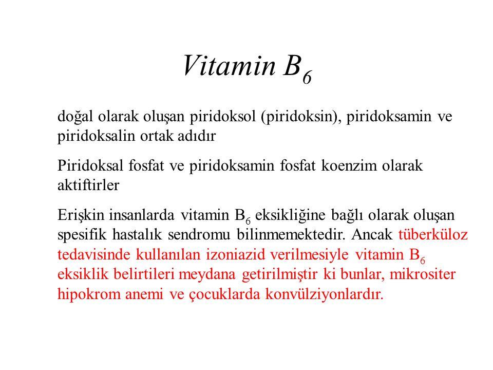 Vitamin B 6 doğal olarak oluşan piridoksol (piridoksin), piridoksamin ve piridoksalin ortak adıdır Piridoksal fosfat ve piridoksamin fosfat koenzim ol