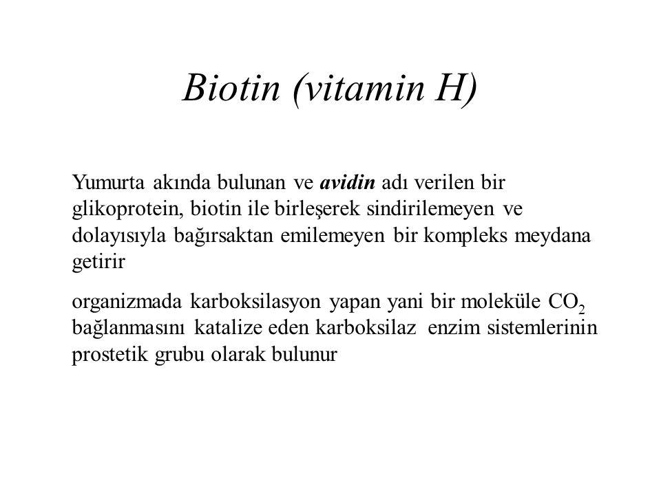 Biotin (vitamin H) Yumurta akında bulunan ve avidin adı verilen bir glikoprotein, biotin ile birleşerek sindirilemeyen ve dolayısıyla bağırsaktan emil