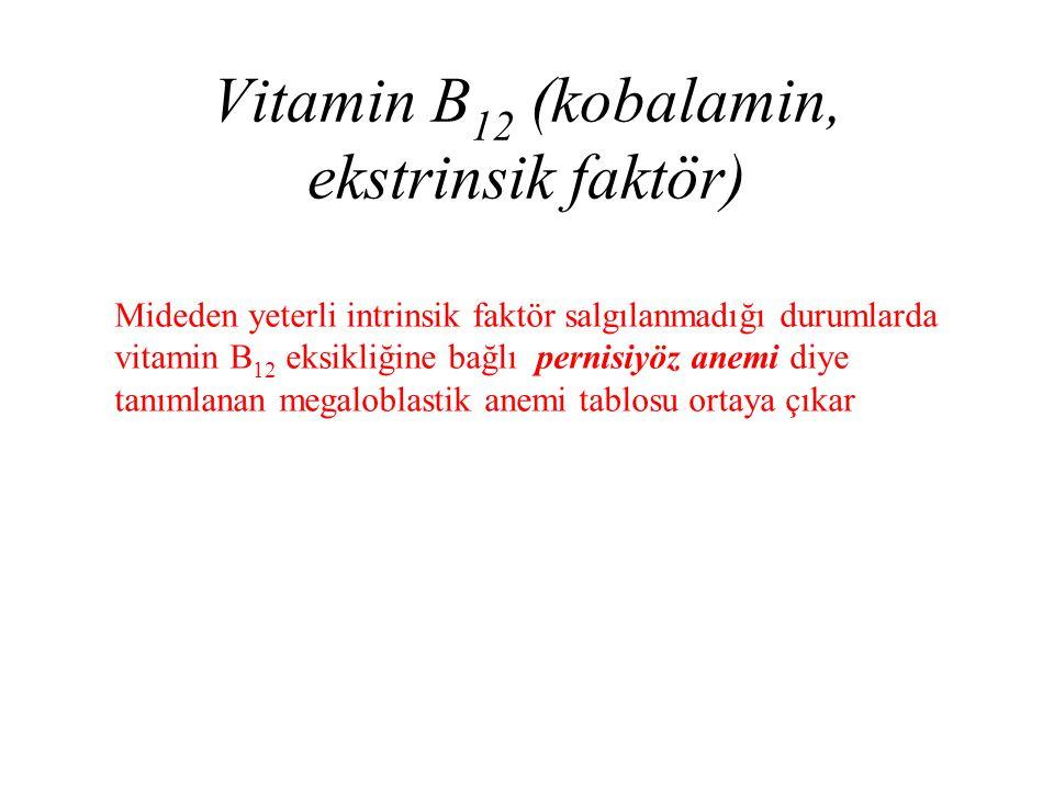 Vitamin B 12 (kobalamin, ekstrinsik faktör) Mideden yeterli intrinsik faktör salgılanmadığı durumlarda vitamin B 12 eksikliğine bağlı pernisiyöz anemi
