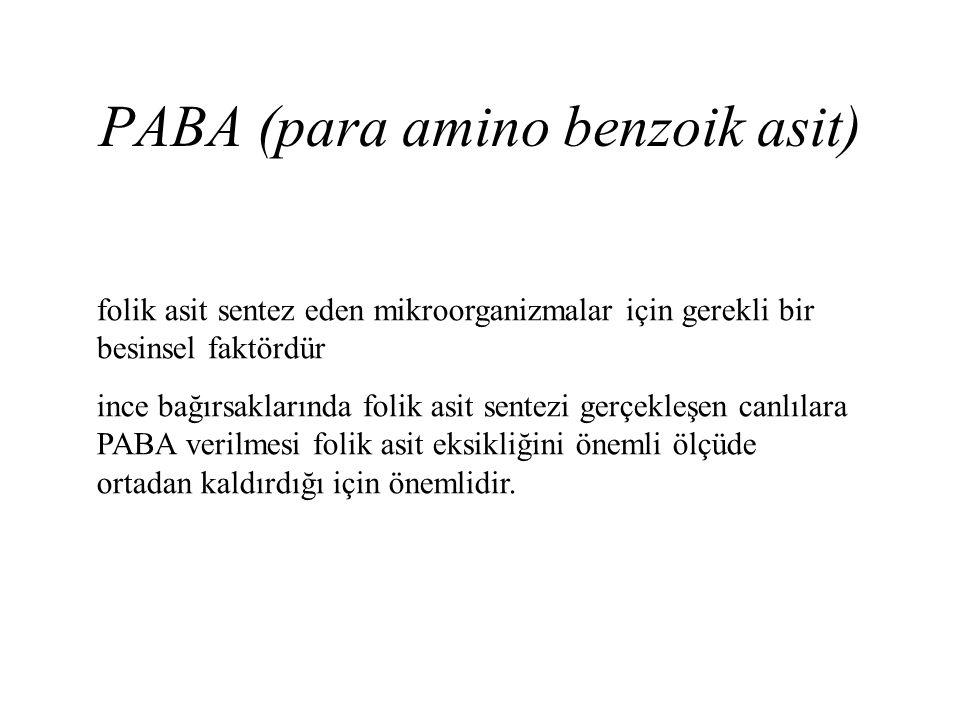 PABA (para amino benzoik asit) folik asit sentez eden mikroorganizmalar için gerekli bir besinsel faktördür ince bağırsaklarında folik asit sentezi ge