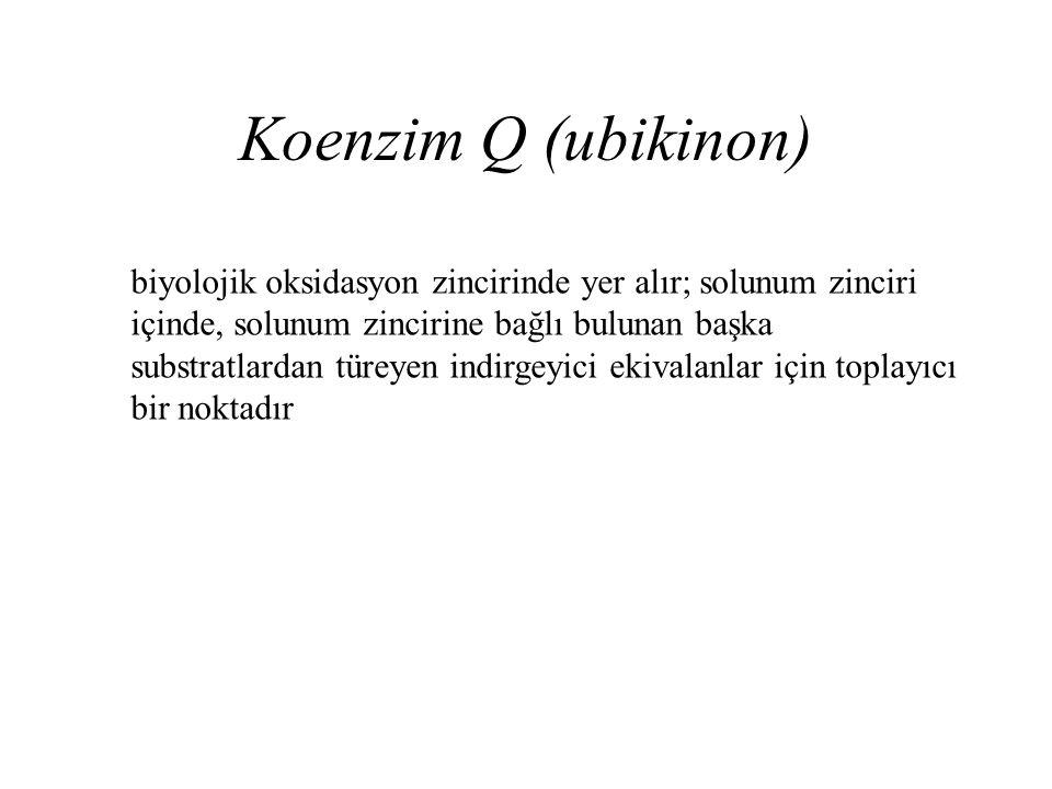 Koenzim Q (ubikinon) biyolojik oksidasyon zincirinde yer alır; solunum zinciri içinde, solunum zincirine bağlı bulunan başka substratlardan türeyen in
