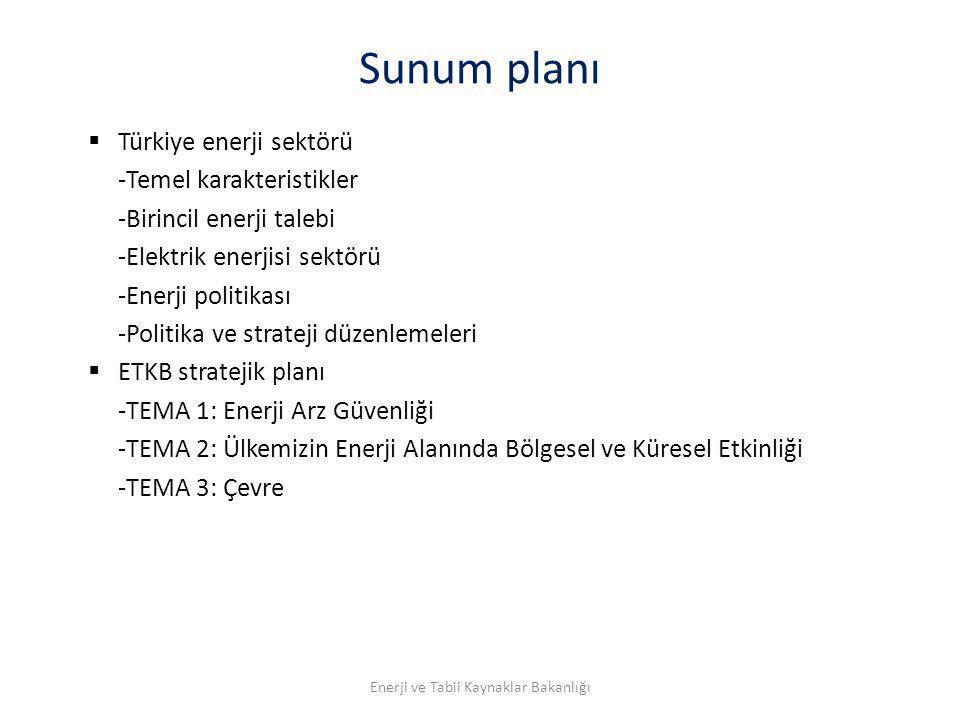 Sunum planı  Türkiye enerji sektörü -Temel karakteristikler -Birincil enerji talebi -Elektrik enerjisi sektörü -Enerji politikası -Politika ve strate
